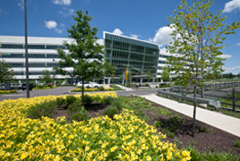 Einstein Medical Center Montgomery